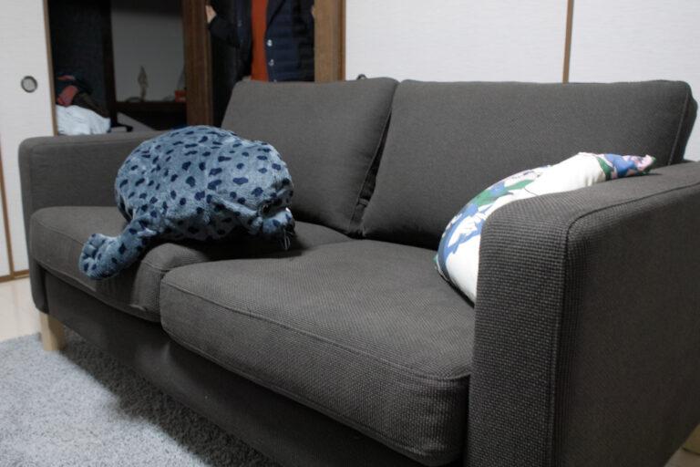 完成!一緒に買ったアザラシを座らせて。